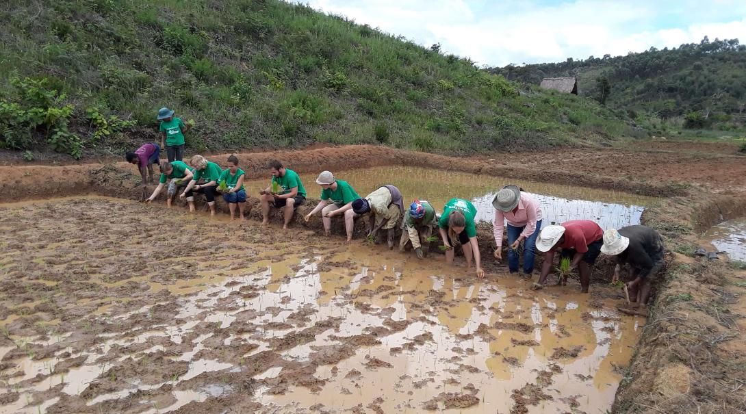 A group of teenage volunteers do some reforestation work in Madagascar during their conservation and community project with Projects Abroad.
